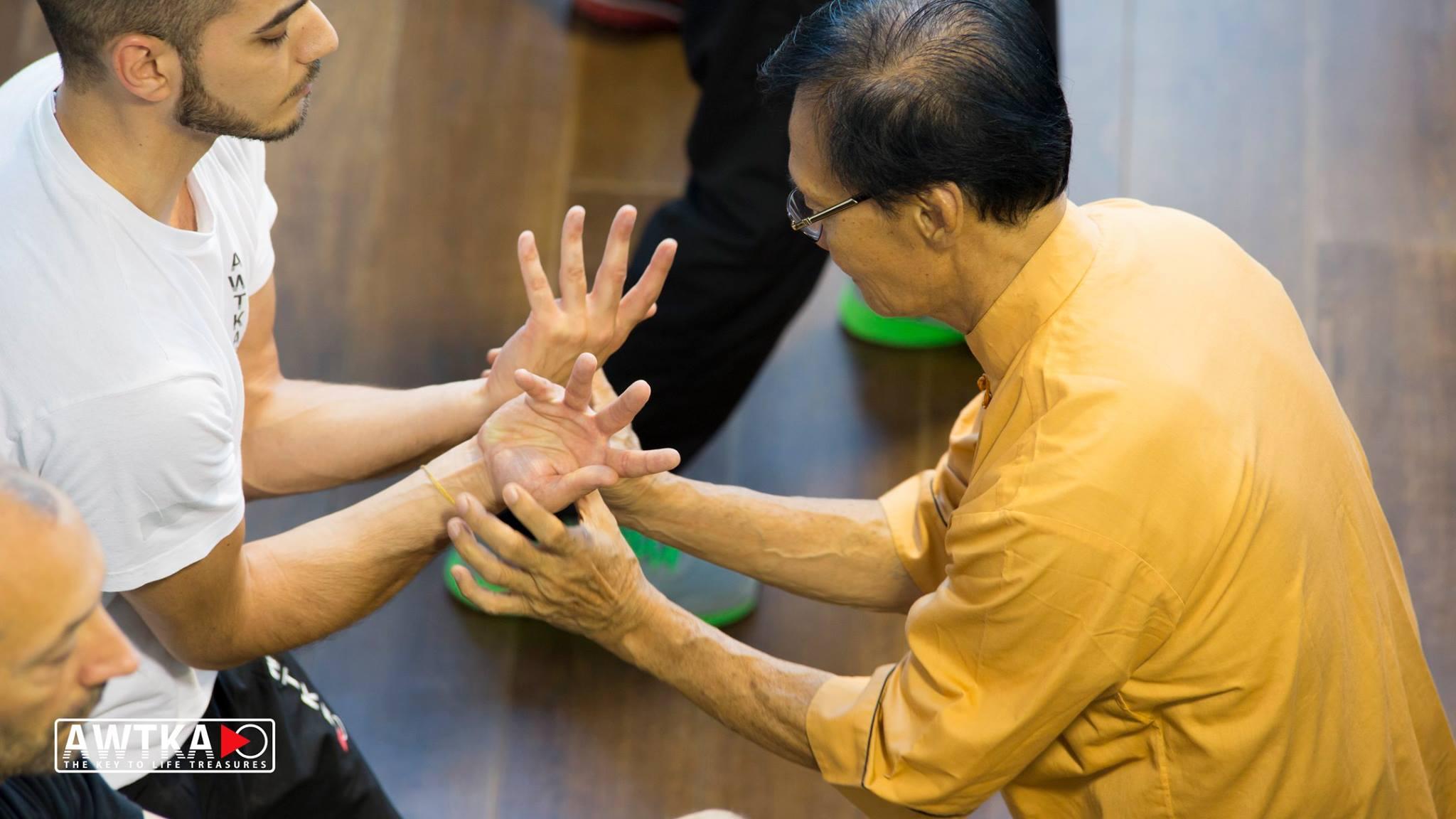 Grand-Master-Tio-Tek-Kwie-Eighteen-Lohan-Hands-Stile