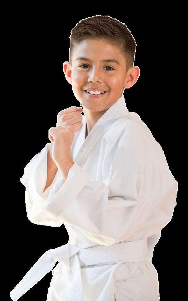 kungfu-lezioni-accademia-arti-marziali-online-on-line