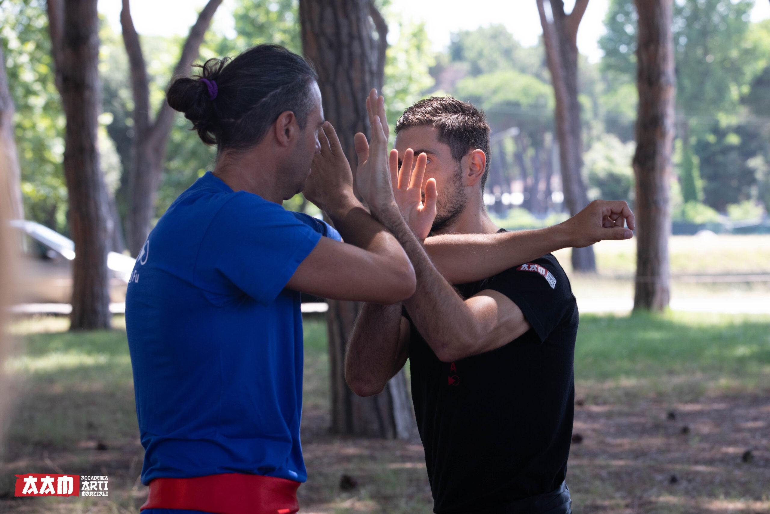 imparare-a-gestire-le-difficoltà-wing-chun